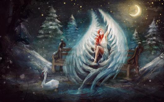 Фото Рыжеволосая девушка-ангел сидит на скамейке возле озера с лебедем ночью в зимнем лесу, by chevsy