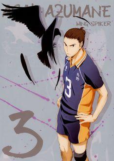 Фото Асахи Азуманэ / Asahi Azumane из аниме Haikyuu! / Волейбол, wing spiker, art by Haruichi Fukudate