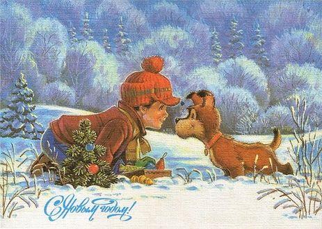 Фото Мальчик в шапке с помпоном и собачка смотрят друг на друга. Около них коробка с новогодними игрушками и маленькая зеленая елочка. На фоне зимнего леса (Советская новогодняя открытка. Художник. В. И. Зарубин)