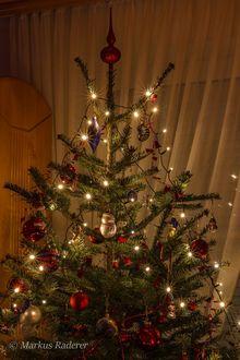 Фото Украшенная новогодняя елка, фотограф Markus Raderer
