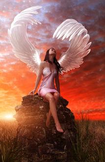 Фото Девушка-ангел сидит на камне по среди поля на фоне заката
