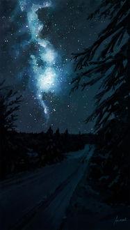 Фото Дорога между елей на фоне ночного неба и млечного пути в нем, by Aenami