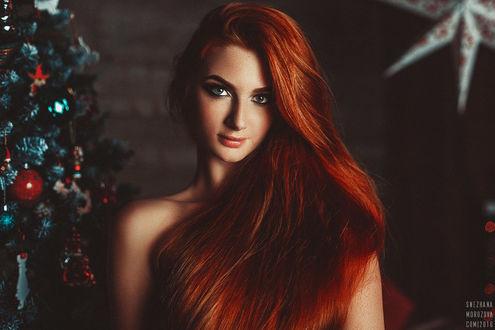 Фото Девушка с длинными рыжими волосами стоит у наряженой елки, by SnezhanaMorozova