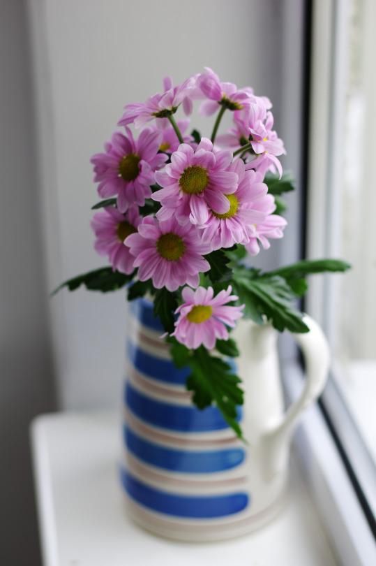 фотографии хризантем в вазе на окне качестве таких конструкций