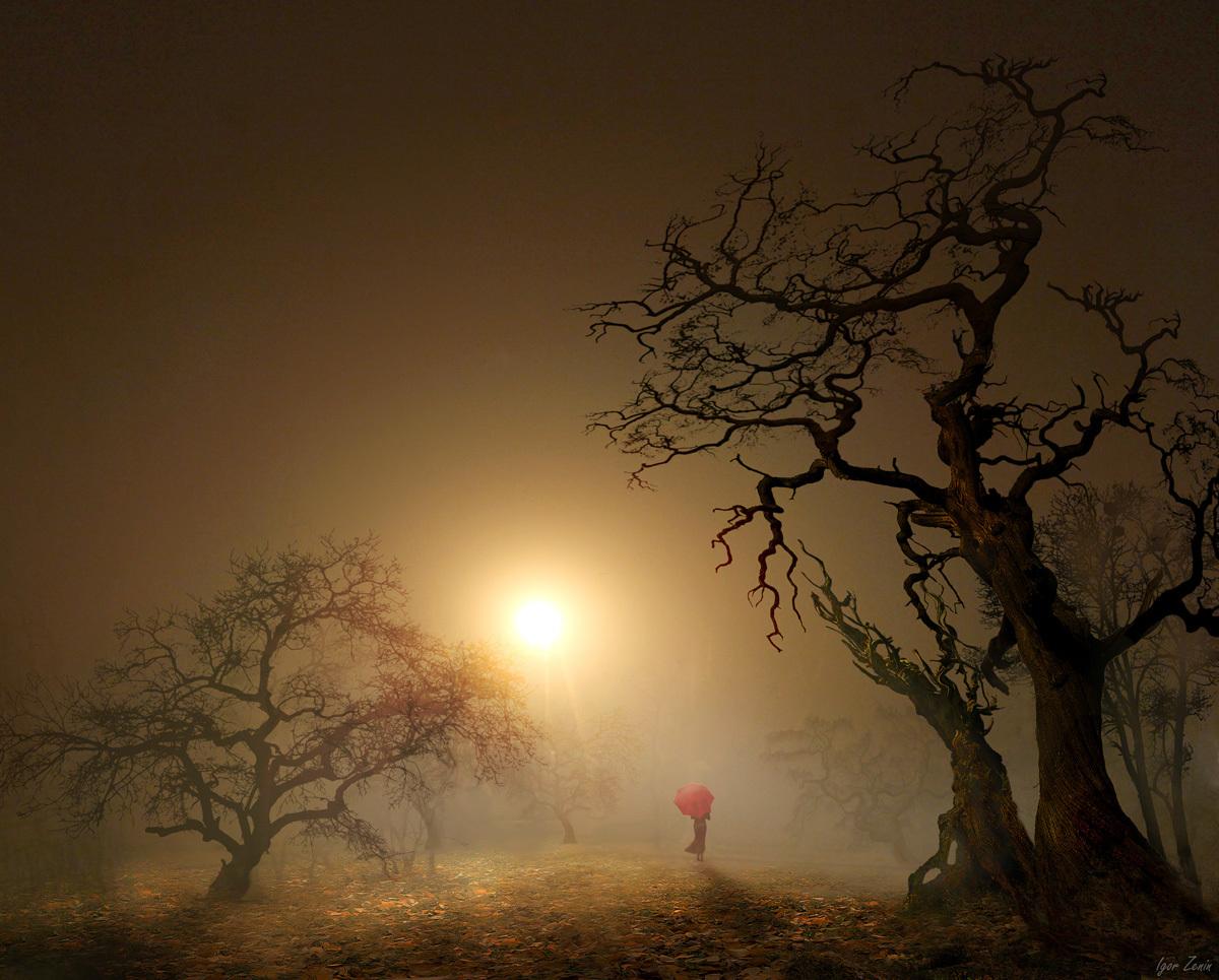 Фото Девушка с красным зонтом на фоне заката, фотограф Игорь Зенин