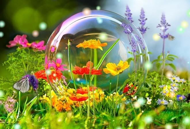 Фото Мыльный пузырь на траве среди цветов