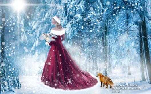 Фото Девушка в образе снегурочки в роскошном бархатном платье держит на руке белую сову, позади девушки стоит лиса на фоне волшебного зимнего леса. Зимняя сказка, by Margarita Kobzareva