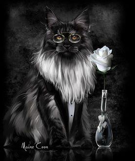 Фото Кот в очках, рядом бутылка с розой, Maine Coon, by Kajenna