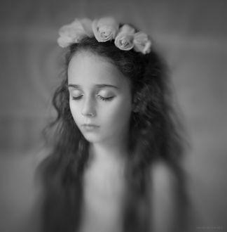 Фото Маленькая девочка в венке из роз на размытом фоне черно-белые, by Alina Mayboroda