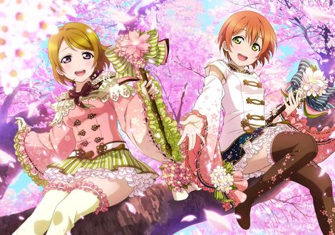 Фото Hoshizora Rin / Хошизора Рин и Koizumi Hanayo / Ханае Коизуми из аниме Love Live / Живая любовь! сидят на ветке цветущей сакуры с микрофонами