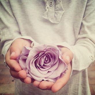Фото Детские руки протягивают розу