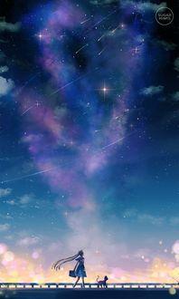 Фото Усаги Тсукино / Usagi Tsukino и кошка Луна / Luna из аниме Сейлор Мун / Sailor Moon идут по мосту на фоне звездного неба, art by sugarmint