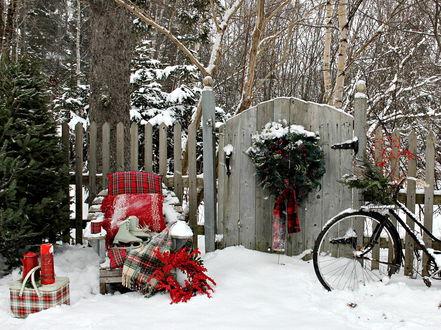 Фото Зимний пейзаж, рождественский дворик
