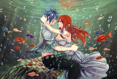Фото Грей Фуллбастер / Gray Fullbuster и Эрза Скарлет / Erza Scarlet из аниме Сказка о Хвосте феи / Fairy Tail, под водой в окружении рыб, by LeonS-7