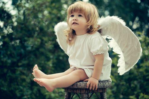 Фото Девочка с крыльями ангела сидит на табуретке на фоне деревьев