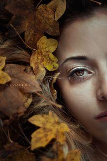 Фото Лицо девушки среди осенних листьев, by silvia-giuli