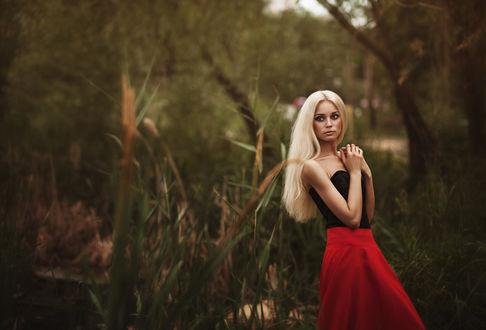 Фото Девушка красивая блондинка на фоне природы