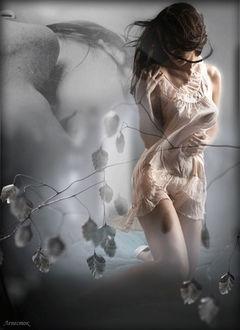 Фото Девушка вспоминает о счастливых моментах с любимым, ветка березы, автор Лепесток