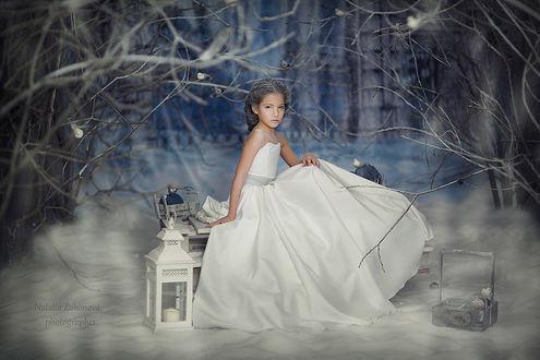 Фото Девочка красивая в роскошном белом платье на зимнем фоне с фонарем, фотограф Наталья Законова