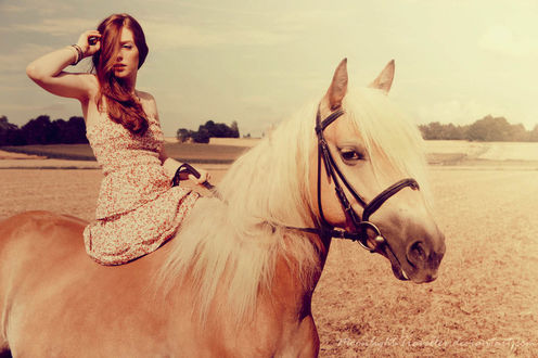 Фото Девушка на лошади в поле, by Moonlight-Traveller