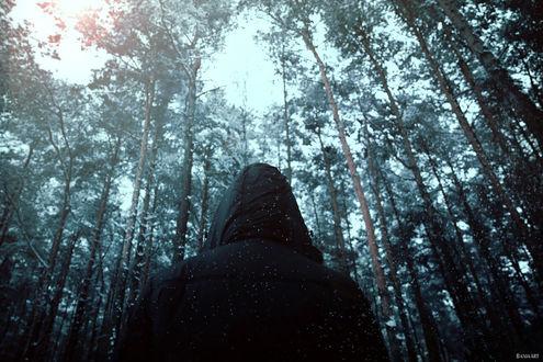 Фото Девушка в куртке с капюшоном стоит на фоне зимних деревьев, by Barbara Florczyk