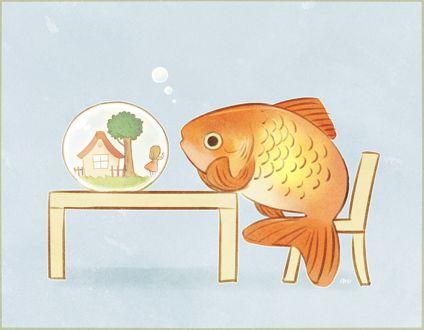 Фото Золотая рыбка наблюдает за девочкой в аквариуме, by a y u