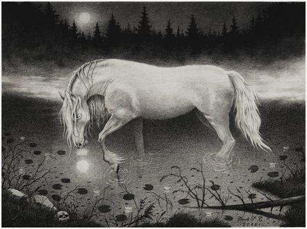 Фото Лошадь стоит в воде, by Derek-Castro