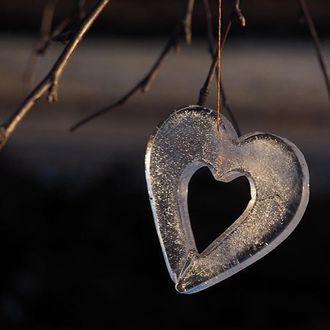 Фото Ледяное сердечко на ветке дерева