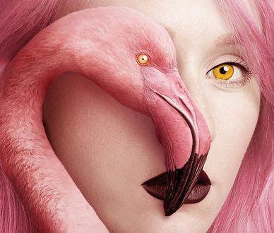 Фото Розовый фламинго, закрывающий половину лица девушки с розовыми волосами, by Flora Borsi