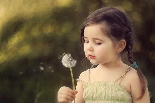Фото Девочка с косичками держит в руке и дует на одуванчик, by Swan-Lake