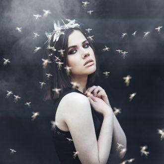 Фото Девушка в черном платье, на черном фоне, стоит скрестив руки на груди, в окружении насекомых, by thefirebomb