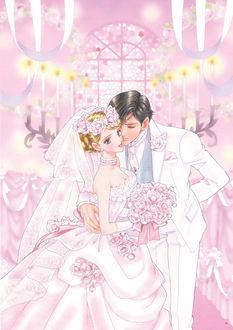 Фото Жених и невеста, art by Chiho Sato