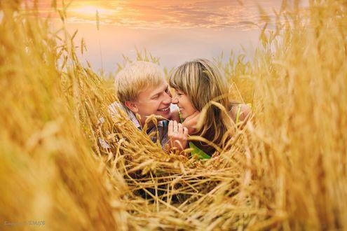 Фото Влюбленная пара в колосьях