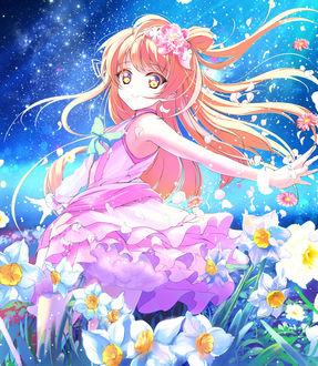 Фото Котори Минами / Kotori Minami в розовом платье в поле цветов под звездным небом