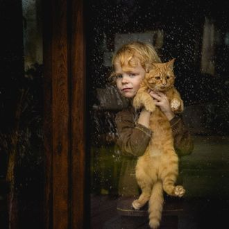 Фото Рыжий мальчик держит на руках рыжего кота и смотрит в окно, фотограф Лидия Мадура