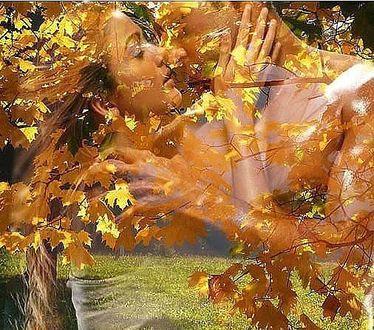 Фото Образ мужчины и женщины, целующихся в золоте осенних листьев
