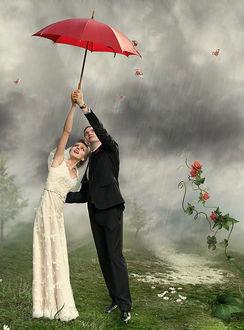 Фото Свадебная пара стоит под дождем с красным зонтиком на мокрой траве, а вокруг летают божьи коровки, художник Катя Рашкевич