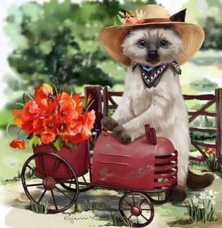 Фото Соломенная шляпка, белая кошечка в шляпке и платочком на шее, прогуливаясь по окрестностям, собрала букет маков, BY KAJENNA / LORRI