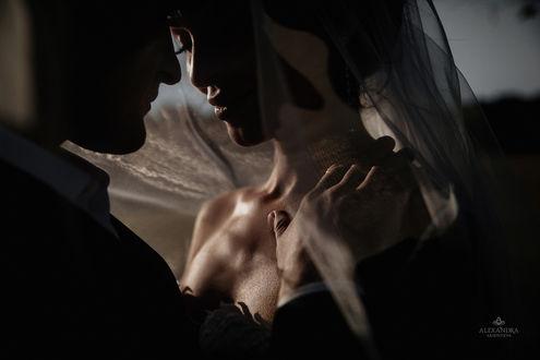 Фото Жених и невеста, фотограф SAHAROZA Александра Аксентьева