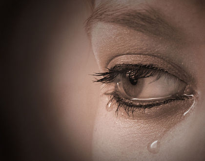 Девушка с карими глазами. - Брюнетки - Скачать 27