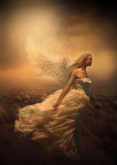 Фото Девушка ангел парящая на фоне природы