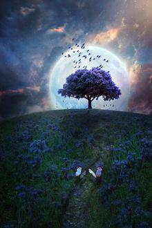 Фото Две бабочки на тропинке среди цветущего поля, которая ведет к дереву, стоящему на фоне полной луны, by Phatpuppyart-Studios