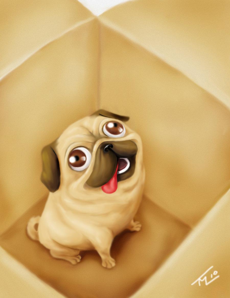 Прикольные рисованные картинки с собаками с надписями ржачные, смешные кошки рисунок