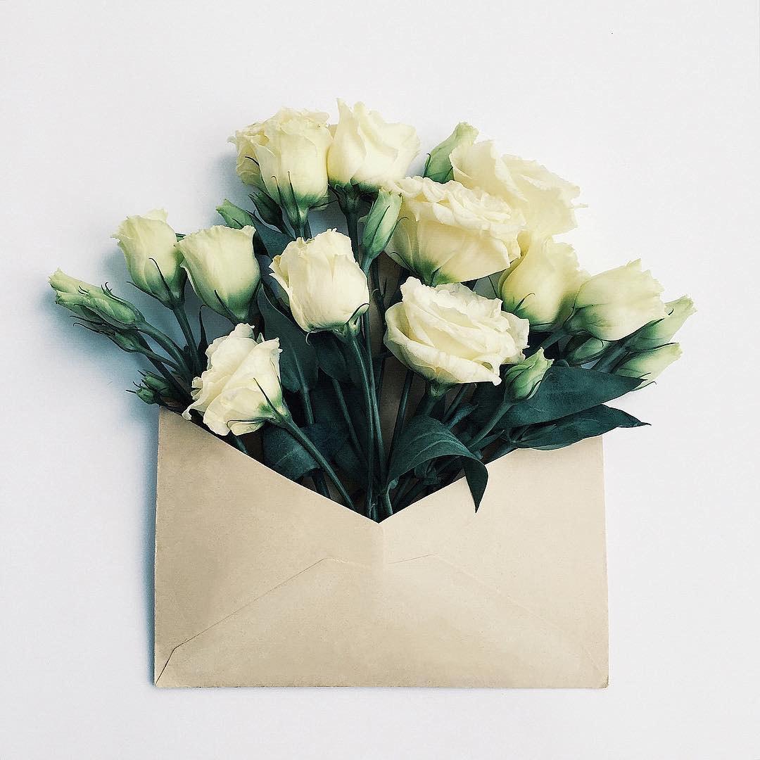 Открытки цветы в конверте