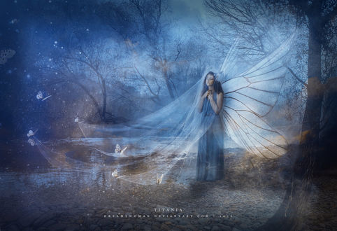 Фото Девушка с крыльями бабочки в прозрачной накидке, by dreamswoman