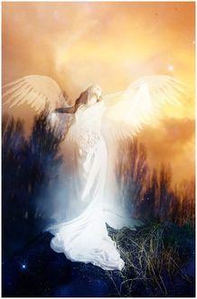 Фото Девушка - белый ангел, парящая над природой