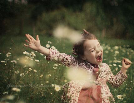 Фото Работа лето привет, радостная девочка на поляне с ромашками, фотограф Громова-Кальминская Елена