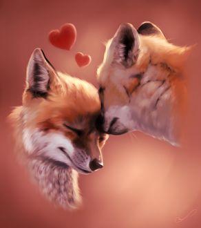 Фото Влюбленные лисы, by Martith