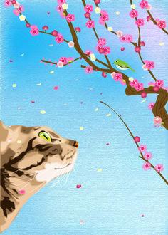 Фото Полосатая кошка смотрит на птичку в ветвях сакуры, by tamaki