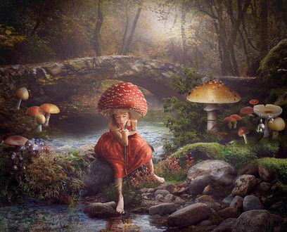 Фото Девочка на голове в шляпке мухомора сидит в мистическом лесу у ручья, держа на руке большую божью коровку, by Cindy Grundsten